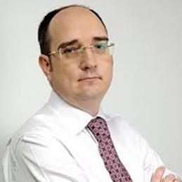 Анатолій Гулей