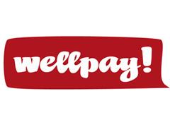 wellplay