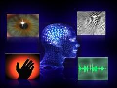 биометрические