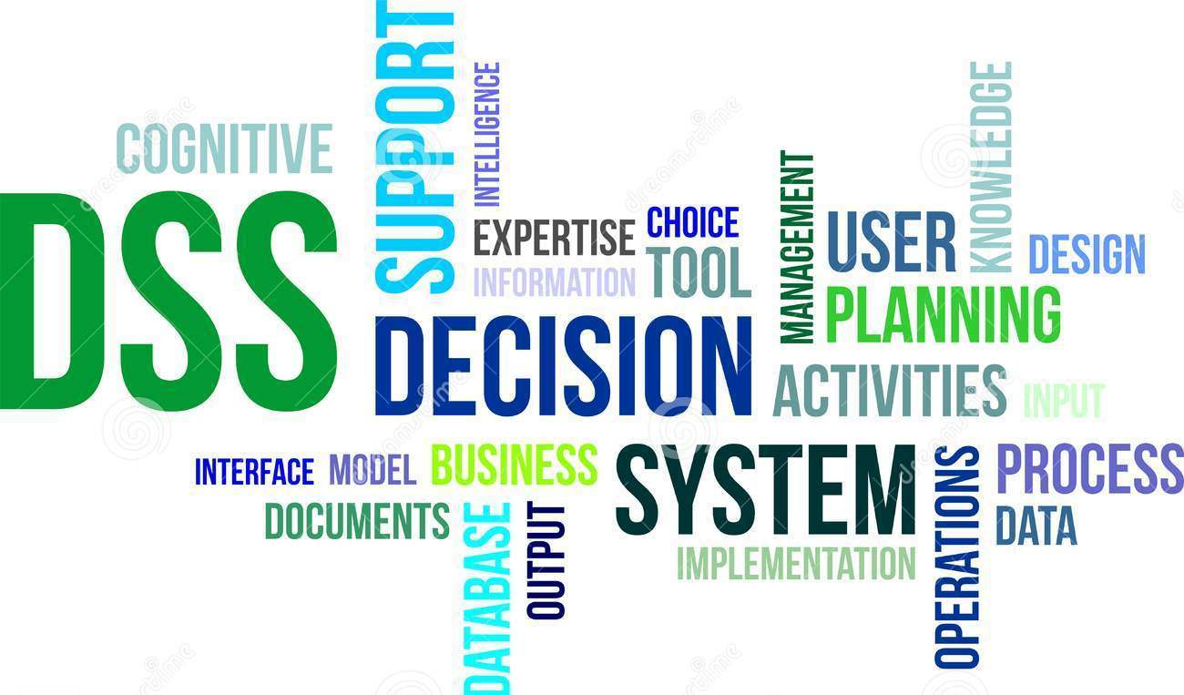 business decision support system and information