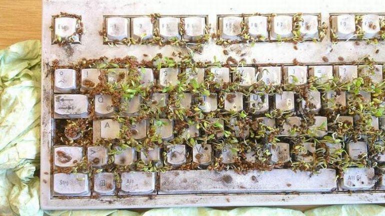 карта для чистки клавиатуры