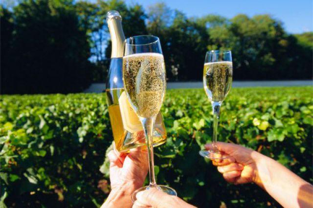 шампанское 4