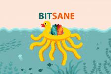 Биржа криптовалют Bitsane запускает поддержку Ethereum