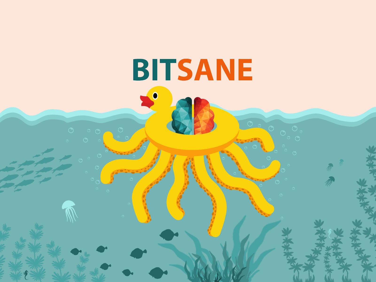 bitsane-front-back-end