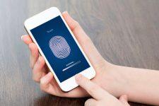 Apple встроит сканер отпечатка пальца прямо в сенсорный дисплей