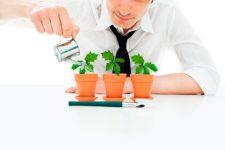 Кризис для стартапов: инвесторы не спешат вкладывать деньги