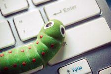 Украинцы массово становятся жертвами новых компьютерных вирусов