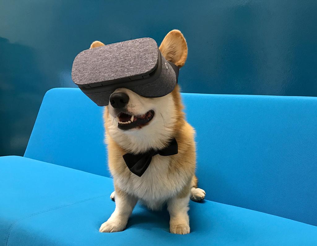 Шлем виртуальной реальности Google