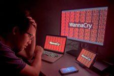 Глобальная кибератака WannaCry: эксперты оценили ущерб