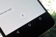 Siri, Google Assistant или Alexa: какой виртуальный помощник самый умный