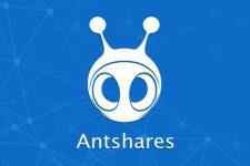 Новый Ethereum: у блокчейн-платформы появился конкурент из Китая