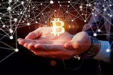 Bitcoin останется лучшим активом даже в случае обвала — эксперт