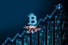 Bitcoin Cash существенно вырос в цене