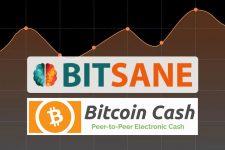 Биржа Bitsane заявила о поддержке Bitcoin Cash