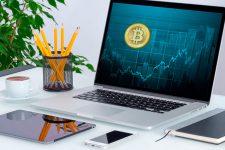 Создан бот, который поможет заработать на скачке курса криптовалют