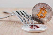 Bitcoin Gold: провайдеры криптосервисов публикуют планы на случай форка