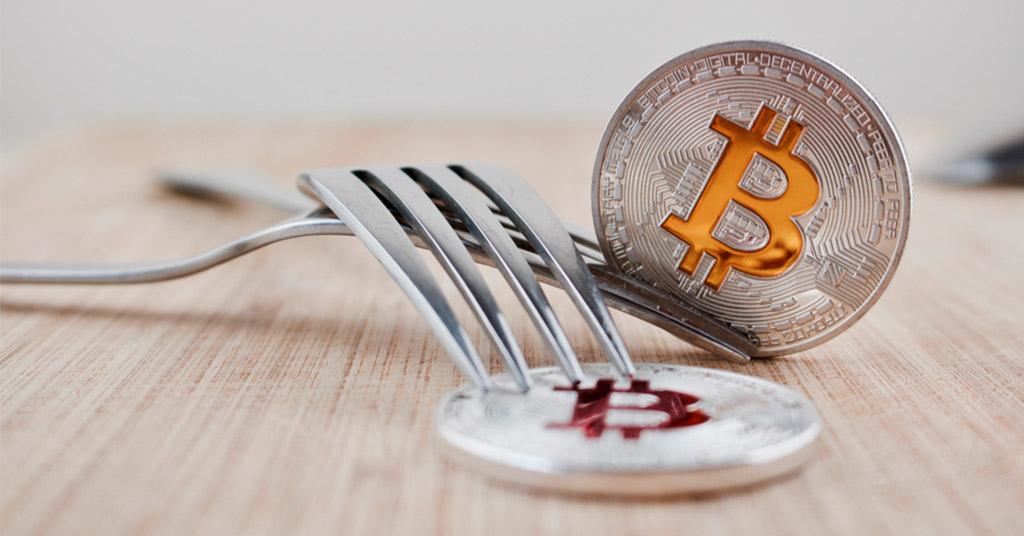Bitcoin Gold провайдеры криптосервисов публикуют планы на случай форка