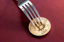 В сети Bitcoin Cash планируется первый хардфорк