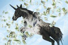 Где живут единороги: ТОП-10 компаний стоимостью больше миллиарда долларов