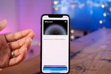 Начался официальный запуск Apple Pay Cash