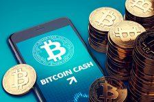 Bitcoin Cash стал лидером роста среди ТОП-10 криптовалют