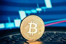 Запреты и ограничения: как регулируют биткоин в разных странах мира