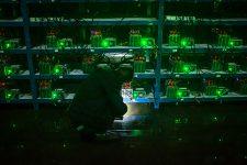 Сотрудники полиции майнили криптовалюту прямо на рабочем месте