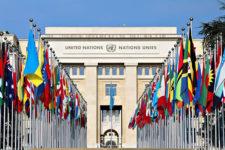 В ООН заинтересовались блокчейном IOTA