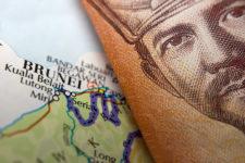 Как Bitcoin: названа стоимость самой дорогой в мире банкноты
