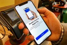 Оплата смартфоном: эксперты назвали причину роста продаж iPhone
