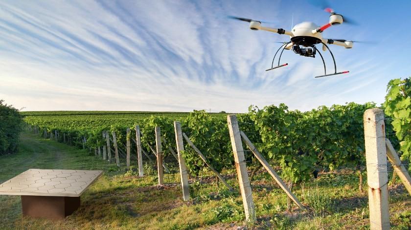дроны в сельськом хозяйстве