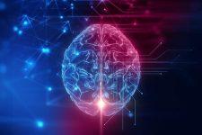 Кабмин одобрил концепцию Минцифры по развитию искусственного интеллекта: что это даст Украине