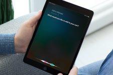 Голосовой шопинг: Walmart запустил новый сервис для пользователей IOS