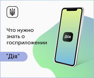 Государство в смартфоне
