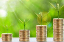 Patreon, краудфандинг, бизнес-ангелы: ТОП-10 источников финансирования для малого бизнеса