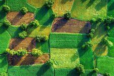 Рада открыла рынок земли в Украине: все о новом законе