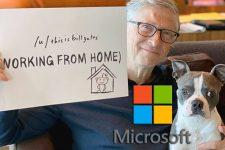 Прогноз от Билла Гейтса: когда закончится эпидемия и какие страны может разрушить вирус