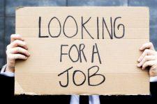 Карантин может лишить работы до 800 млн человек по всему миру — МОТ