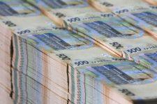 Рада схвалила законопроект про випуск ОВДП на 20 млрд грн