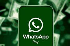 Сервис денежных переводов в WhatsApp приостановили спустя 10 дней после запуска