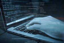 Стало известно, сколько Microsoft выплатила «белым» хакерам за последний год