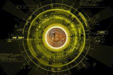 Криптовалютные биржи, волатильность, особые клиенты: что нужно знать бизнесу, который хочет принимать биткоин