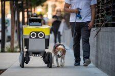 Сервис роботизированной доставки отделился от компании Uber