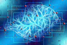ЄС може частково заборонити використання штучного інтелекту: які сфери під загрозою