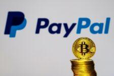 «Спрос на криптовалюту превзошел ожидания PayPal» — Дэн Шульман