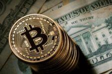 Стало відомо, яку суму в криптовалюті втратили власники забутих криптогаманців